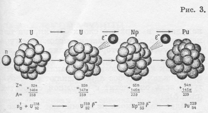 Ядра урана поглощают нейтроны,